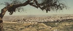 אוצרות התרבות וההיסטוריה של ישראל