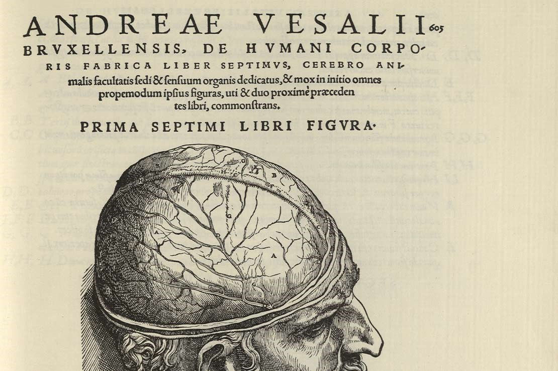 Andreas Vesalius, On the Human Body, Swiss, 1555